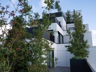 Meer dan 2.000 planten in 'hoogste bos van Antwerpen': wereldvermaarde architect Stefano Boeri huldigt  Palazzo Verde officieel in