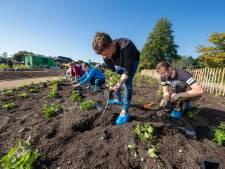 Studenten helpen bij aanleg vliundertuin in Emmeloord