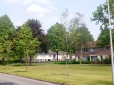 Bomenstichting: help jonge aanplant een handje tegen verdroging