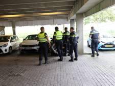 Nieuwsoverzicht | Man steekt personeel Albert Heijn neer - Acht cavia's achtergelaten in doos