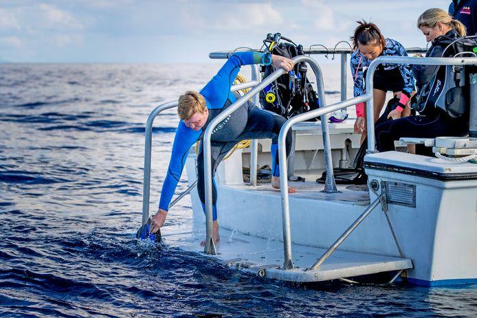 Koning Willem-Alexander, vlak voor de duik.