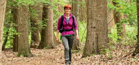 Nieuw wandelboekje laat mooiste van Sallandse Heuvelrug zien