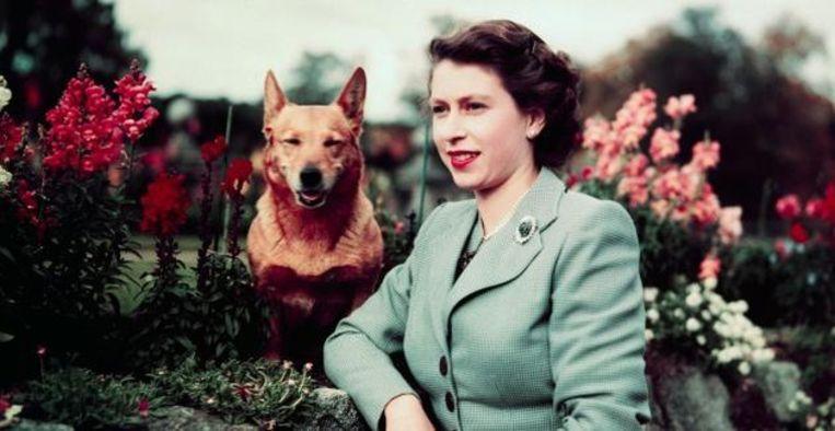 Beautiful: de mooiste foto's van jarige Queen Elizabeth (95) Beeld Getty Images