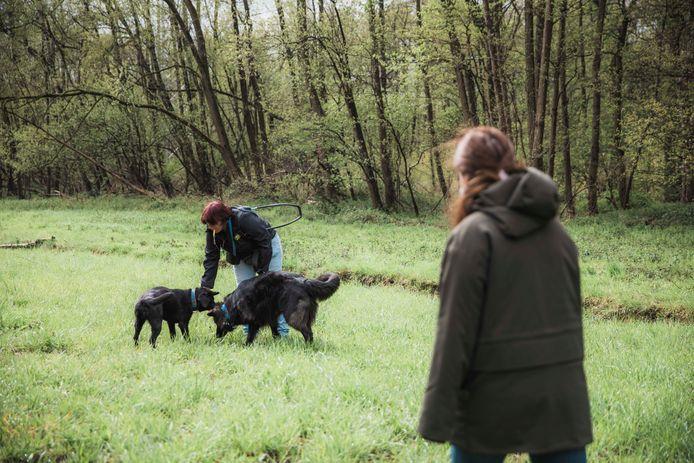 Voortaan mag Sita net als andere assistentiehonden loslopen in natuur- en bosgebieden.