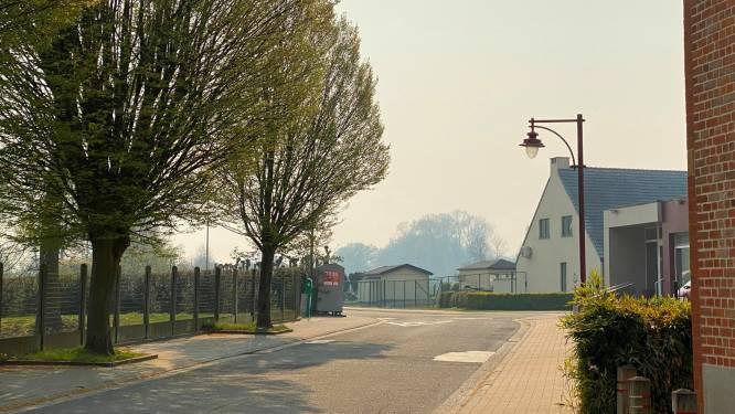 Rookpluim brandend Antwerps natuurgebied trekt ook over Denderstreek