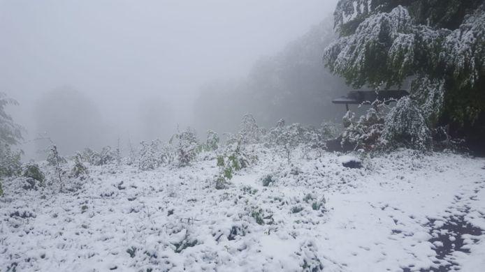 Sneeuw in Vaals