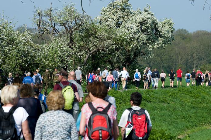 Bloesemalert geeft uitsluitsel over bloeiende fruitbomen