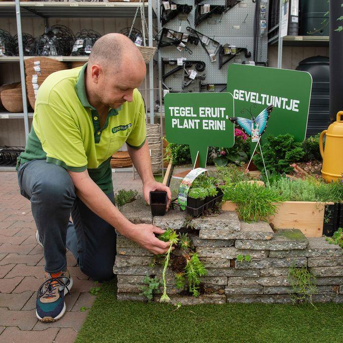 Planten in plaats van tegels in de tuin kan veel wateroverlast voorkomen, zegt Marcel L'Abee van GroenRijk bij het klimaatplein in zijn zaak. Op het plein worden diverse aspecten over het duurzaam omgaan met je eigen omgeving belicht.