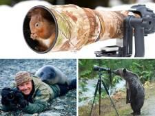 Quand les animaux sauvages interrompent les photographes animaliers