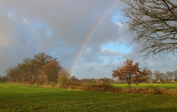 De regenboog, symbool van diversiteit. (foto ter illustratie)