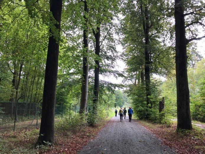 Leuven was vorig jaar nog gaststad voor de Refugee Walk. Door de coronamaatregelen koos de organisatie dit jaar voor een andere formule.