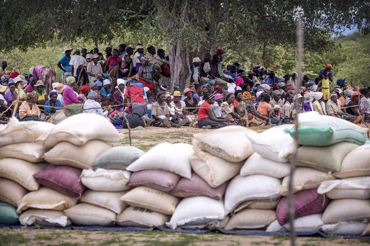 Inwoners van Chivi District wachten onder bomen op hun maandelijkse rantsoen van het Wereldvoedselprogramma. De hulp loopt binnenkort af, maar ook de nieuwe oogst lijkt mislukt. Beeld Sven Torfinn