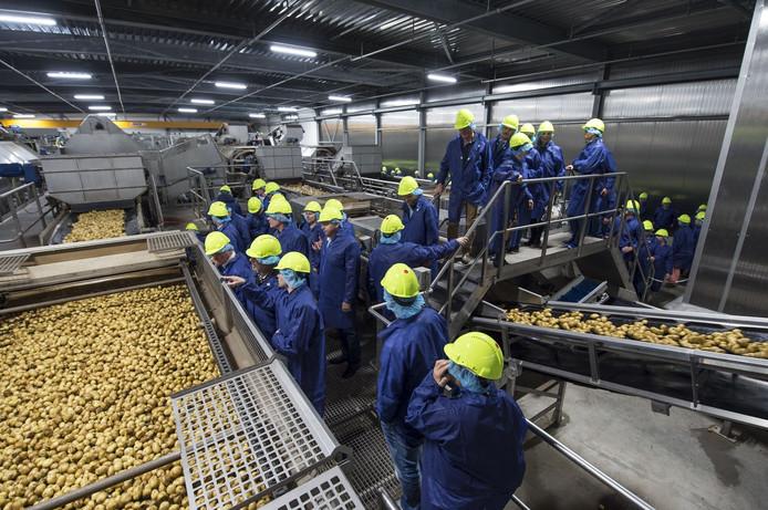 De aardappelontvangsthal van Lamb Weston/Meijer in Kruiningen.