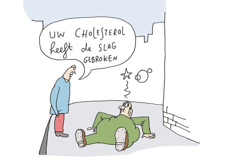 Kama - cholesterol Beeld Kamagurka