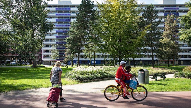 Een van de vijftien flatgebouwen die, samen met vier grote parkeergarages, de Molenwijk in Noord vormen Beeld Dingena Mol