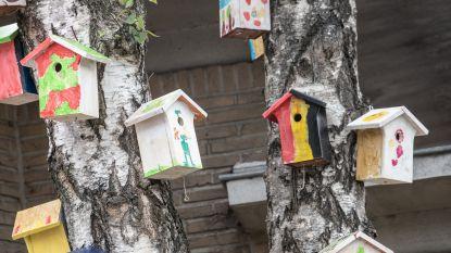 Natuurpunt en Milieufront sporen inwoners aan om nestkastjes en insectenhotelletjes op te hangen