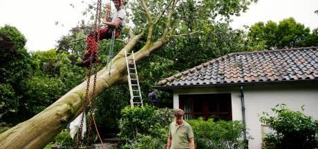 'Vrij veel' stormschademeldingen, de meeste uit Leersum en West Maas en Waal, 'en de teller loopt nog'