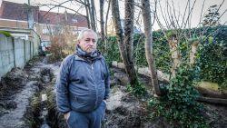 Vandaag D-day voor bomenvriend Alain (54)? Bevestigt rechter gedwongen verkoop van ouderlijke woning?
