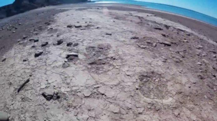 Des empreintes de dinosaures découvertes dans un lac en Argentine.