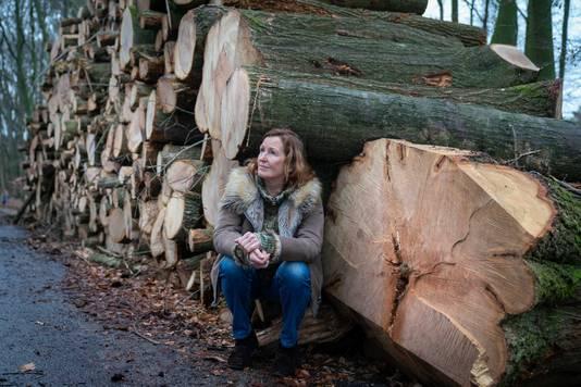 Maria van der Burght bij het restant van het bos dat is gekapt op landgoed Warnsborn. De enorme stam rechts is van de 'vaderboom' waar ze graag mediteerde.