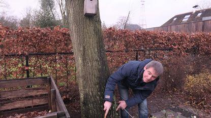 Wijk huurt gezamenlijk boomexpert in