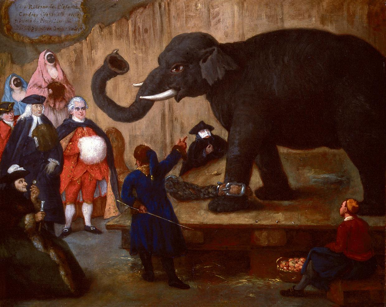De tentoonstelling van een olifant in Venetië. Alle beelden komen uit De leeuw van Alpi van Arie van den Berg.  Beeld