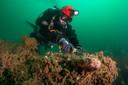 Een duiker snijdt de achtergebleven visnetten los.