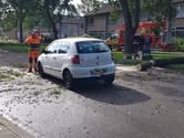 Automobilist belemmert bomenruimers in Apeldoorn