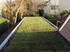 Groen dak goed voor het milieu en in De Ronde Venen ook voor de portemonnee