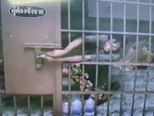 Ils s'échappent de leur cellule d'un bureau de police thaïlandais grâce à un trombone