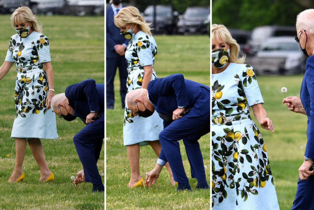 Romance à la Maison Blanche: Joe Biden s'est penché pour choisir un pissenlit pour sa femme.