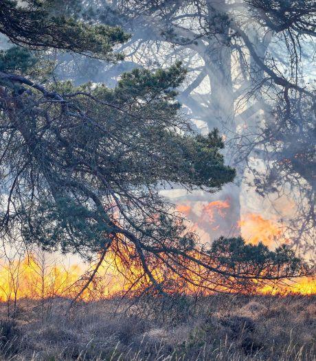 Risico op natuurbrand in Het Gooi neemt toe door aanhoudende droogte