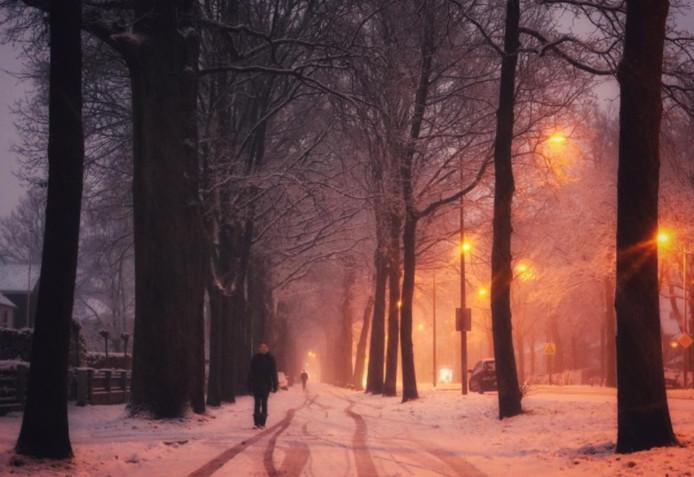 Sneeuw in Zwolle.