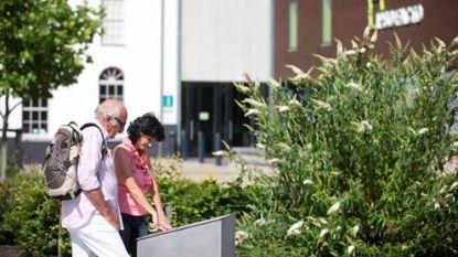 Eerste Meiklokjeswandeltocht dwars door Oudenburg: vier afstanden en ook wandelzoektocht