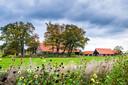 De omgeving van Erve Hondeborg nodigt uit tot een ommetje.