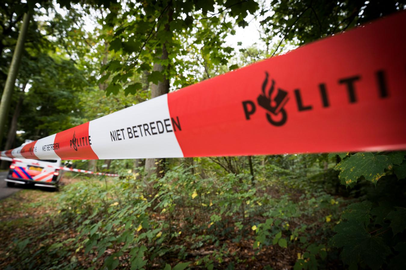 Algemene foto, niet gemaakt in het bos bij Son en Breugel.