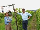 """Wijngoed Kapelle vormt dé uitlaatklep voor artsenkoppel: """"In de wijngaard komen we eindelijk tot rust"""""""