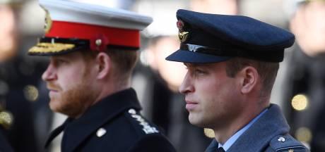 """""""Ces pratiques ont fini par lui ôter la vie"""": Harry et William condamnent l'interview choc de Lady Diana"""