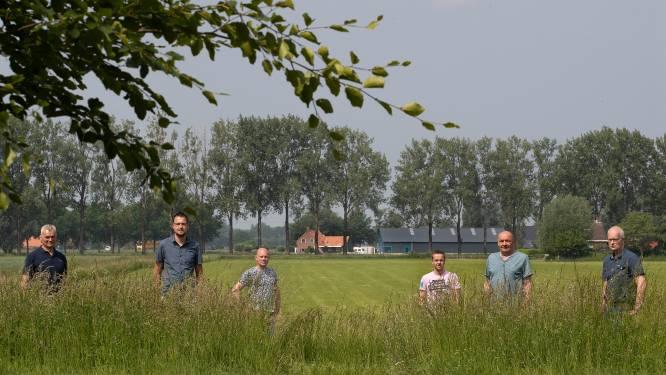 Buurt teleurgesteld om 'minimale aanpassingen' voor 20 hectare groot zonnepark Oude Steeg