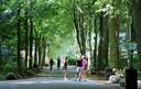 Wandelaars en sporters op een van de paden van het landgoed Rhijnauwen bij Utrecht.
