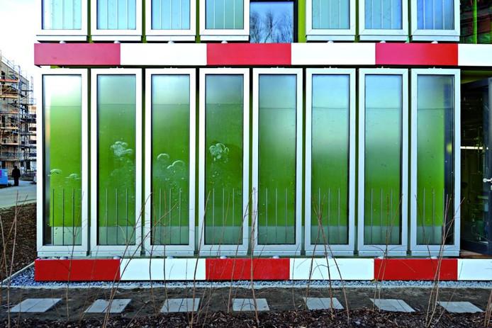Het huis in Hamburg waar de Biofacade Solar Leaf panelen twee jaar lang worden getest. foto Colt International