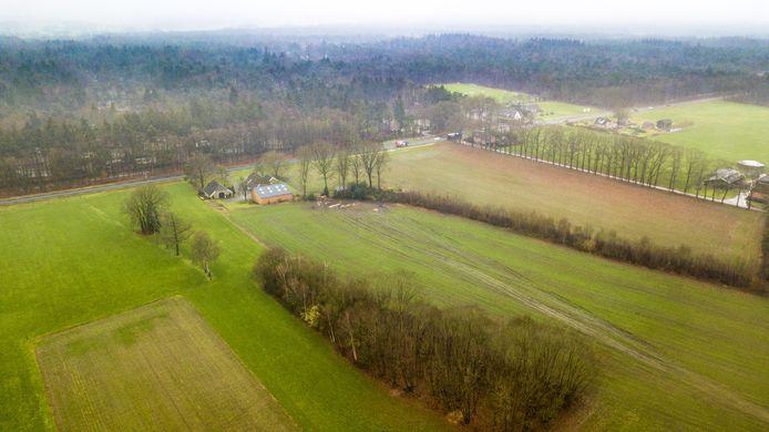 De bos- en groenrijke omgeving van het buurtschap Klein Dochteren. Weilanden waar koeien grazen zouden plaats moeten maken voor een dierenpark vol luiaards, leguanen, anaconda's en keizertamarins,  een soort besnorde miniaapjes.