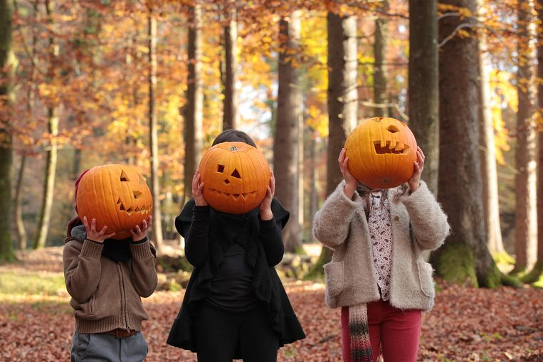 Two girls and a boy are playing halloween in the woods, covering their faces with carved pumpkins. Beeld Getty Images