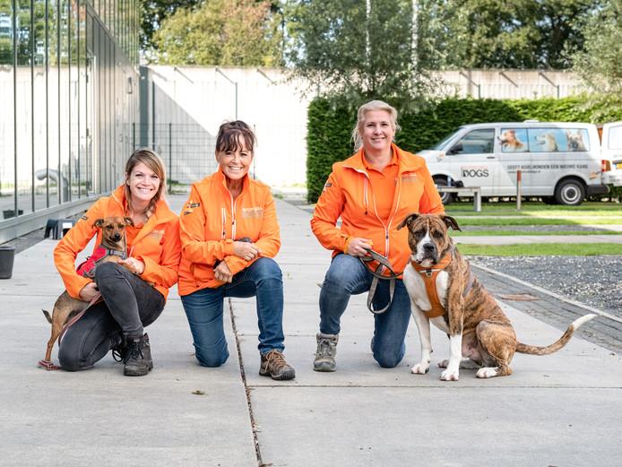 Gedetineerden trainen de asielhonden. Alexandra, Marlies en Hanneke begeleiden de trainingen.