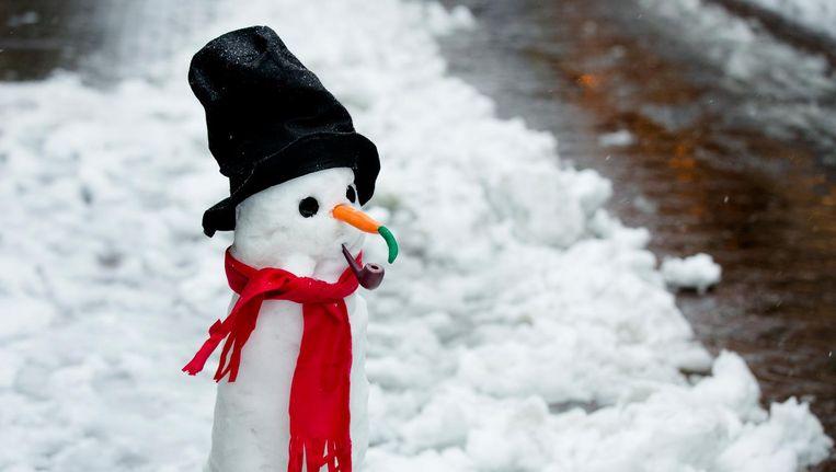 Een sneeuwpop in Dordrecht. Beeld anp