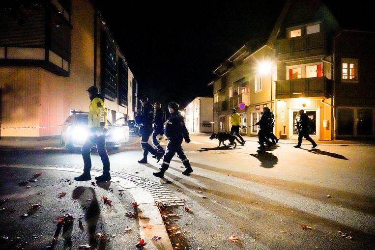 Politie op straat in Kongsberg. Beeld REUTERS