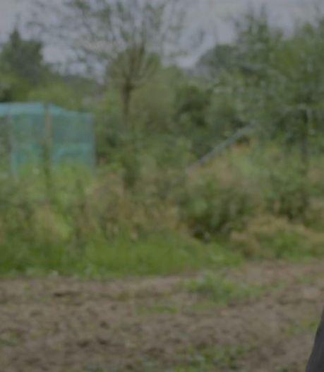 'Gouden koppel' Maarten van Rossem en Emma Wortelboer trekt 674.000 kijkers naar NPO 3 bij bezoek aan boerderij in Apeldoorn