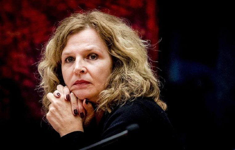 Edith Schippers, ex-minister van Volksgezondheid. Beeld anp