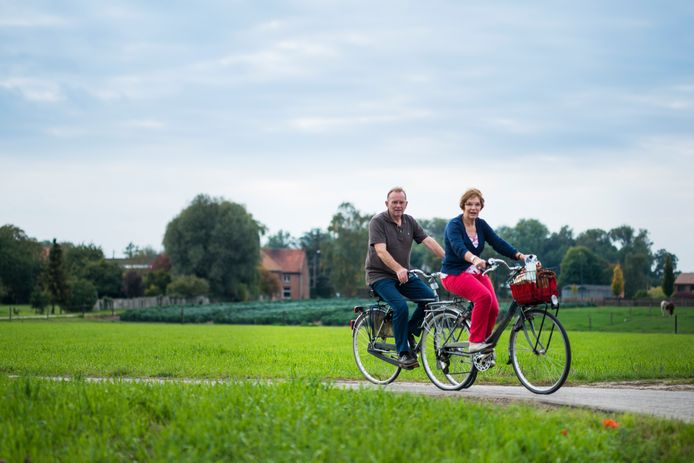 Toerisme Scheldeland vzw