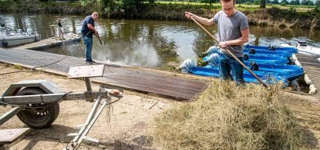 Overstroomd watersportcentrum Dolfijn is weer boven water: hooi opruimen in plaats van barbecueën